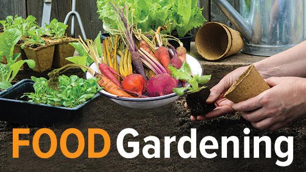 food gardening course