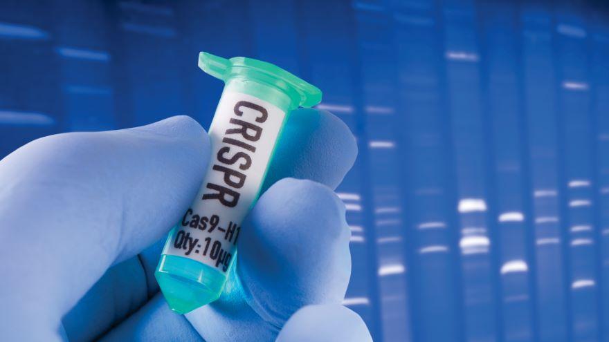 CRISPR's Rise, Promise, and Peril