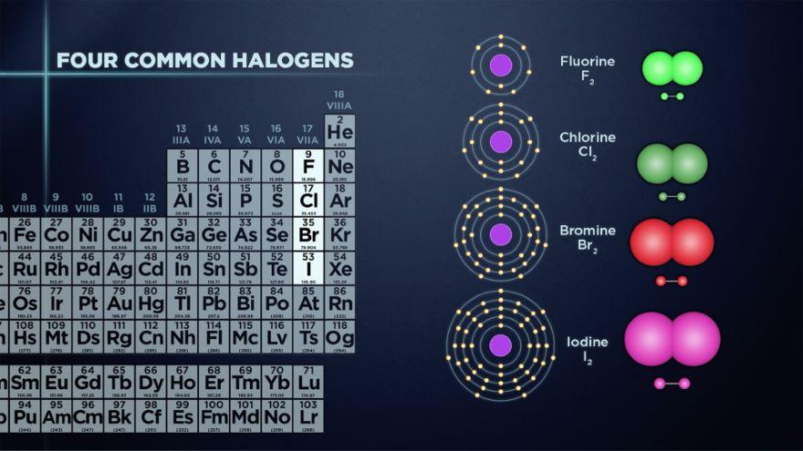 Halogens: The Most Reactive Nonmetals