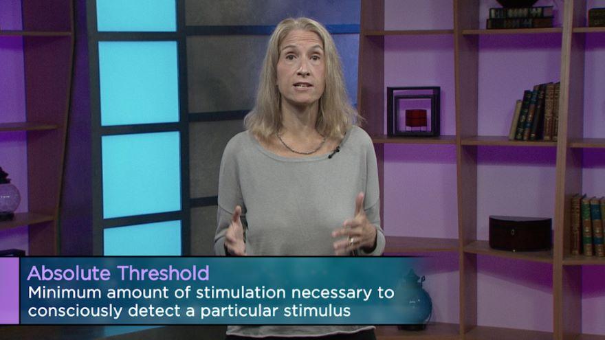 Sensation: How You Gather Information