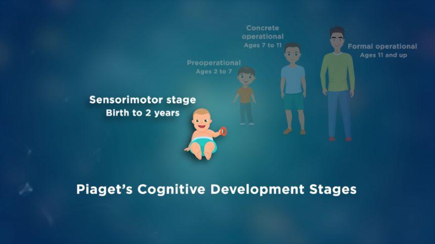 Cognitive Development across the Lifespan