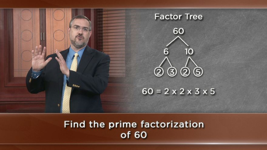 Number Theory-Prime Numbers and Divisors
