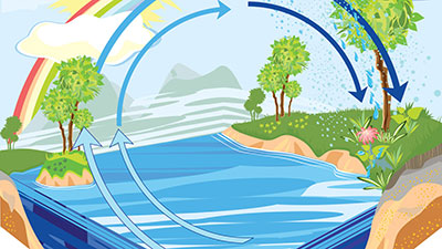 Earth Cycles-Water