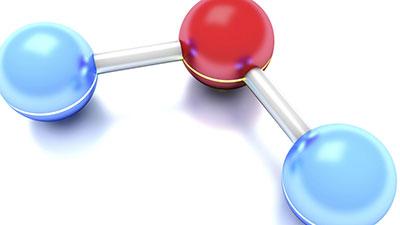 Life's Molecular Building Blocks