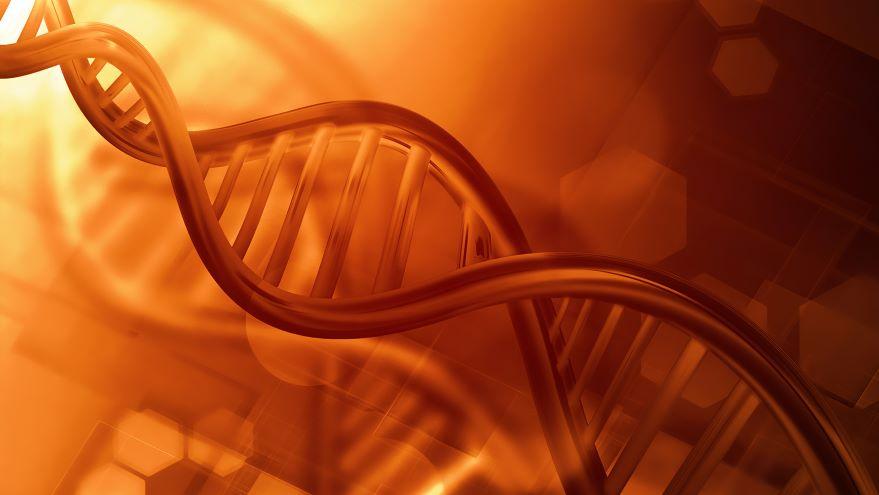 Genetics-From Mendel to Molecules