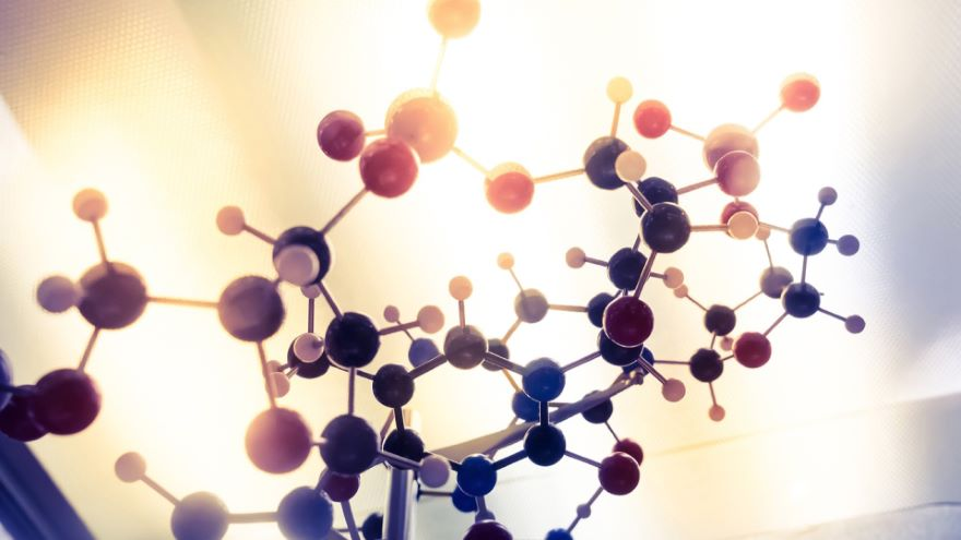The Eloquent Chemistry of Carbon Compounds