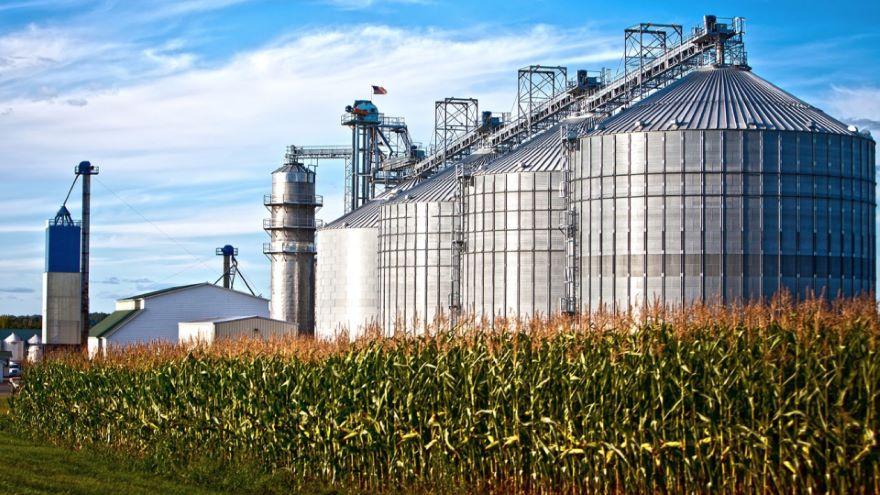 Biofuels: Biodiesel and Ethanol