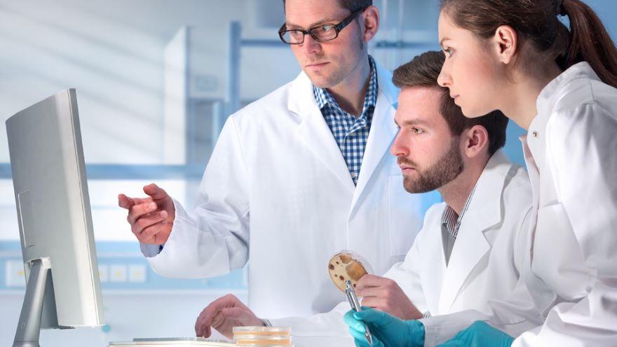 Science-Mendel's Too-Good Peas