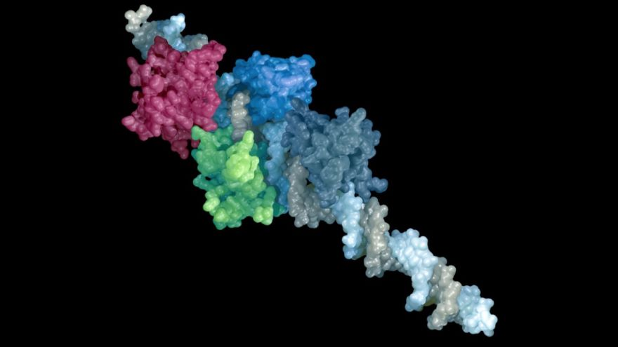 Proteins-How Things Get Done in the Cell
