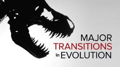 Major Transitions in Evolution