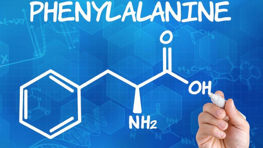 Genes, Enzymes, and Metabolism