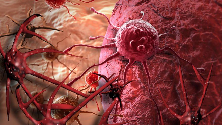 Molecular Medicine-Cancer
