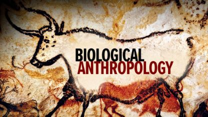 Biological Anthropology: An Evolutionary Perspective