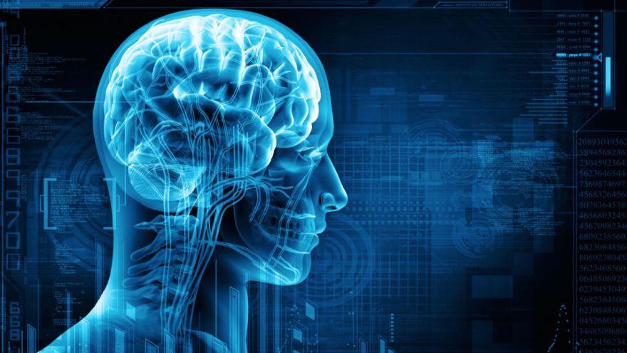 Historical Underpinnings of Neuroscience
