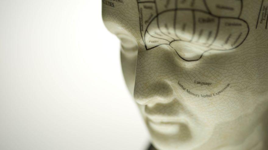 Neuroscience-Looking Back and Looking Ahead