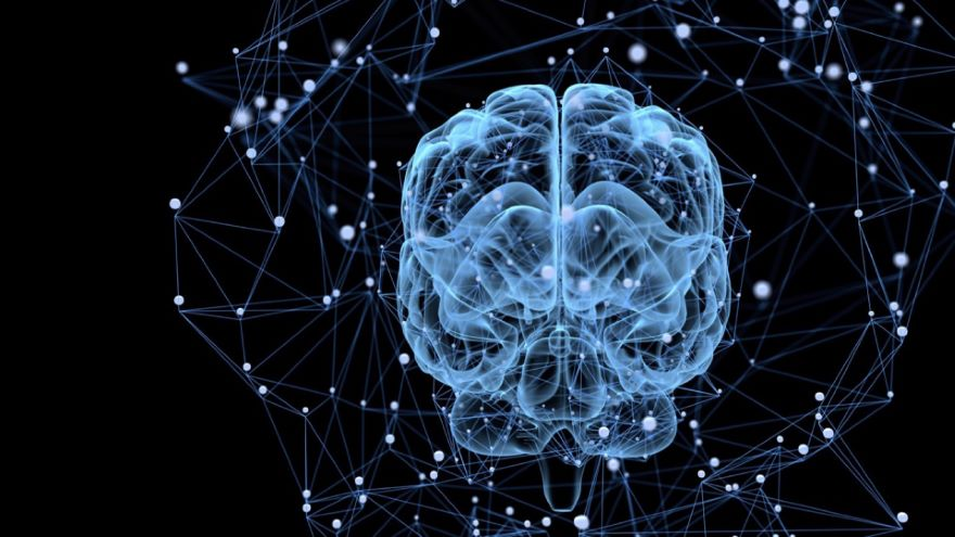Learning and Synaptic Plasticity