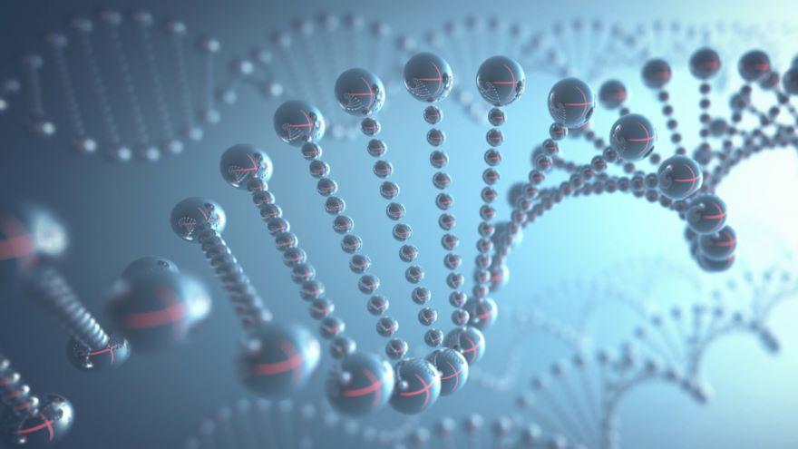 What Do Genes Do? Microevolution of Genes