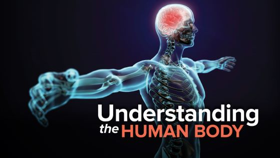Understanding the Human Body: An Introduction to Anatomy and Physiology, 2nd Edition