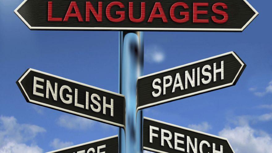 Language Mixture-Grammar