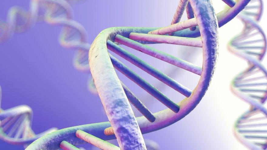 Genes and Intelligence