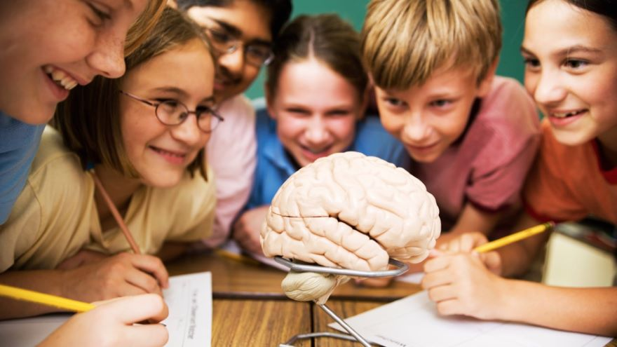 Intelligence and the Brains of Children