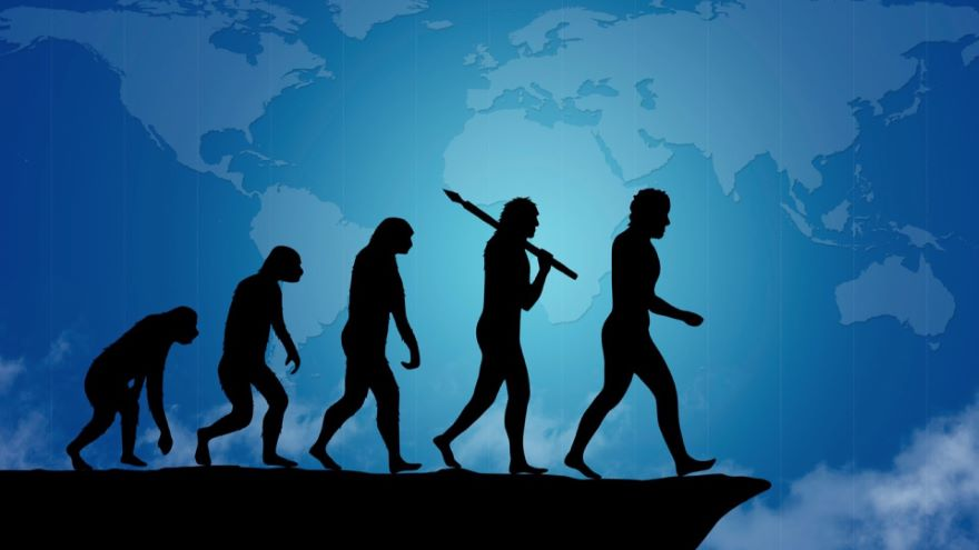 Microevolution, Culture, and the Brain