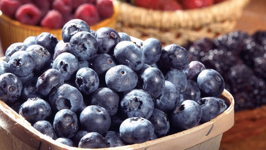 Can Certain Foods Make You Smarter?