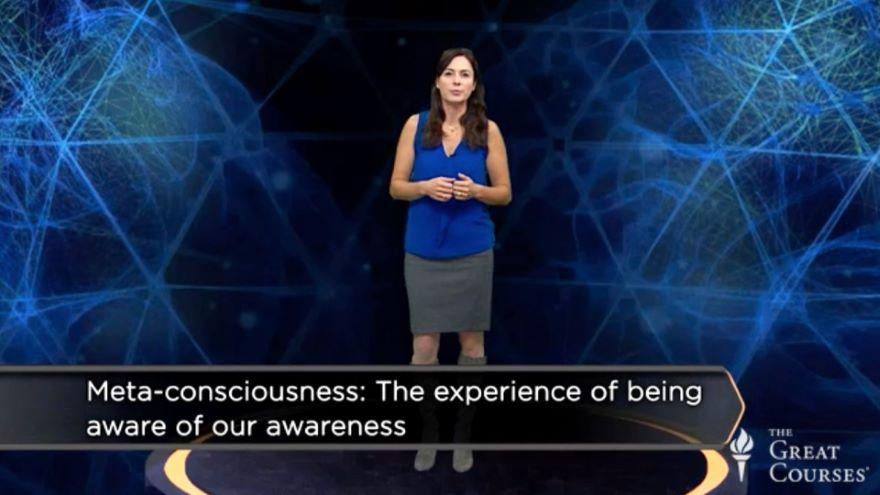Are You Always Conscious while Awake?