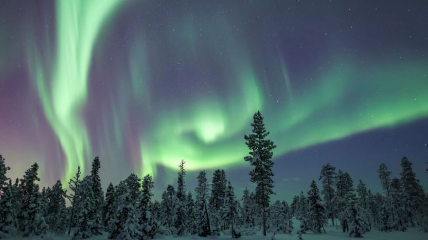 Auroras-Light Shows on the Edge of Space