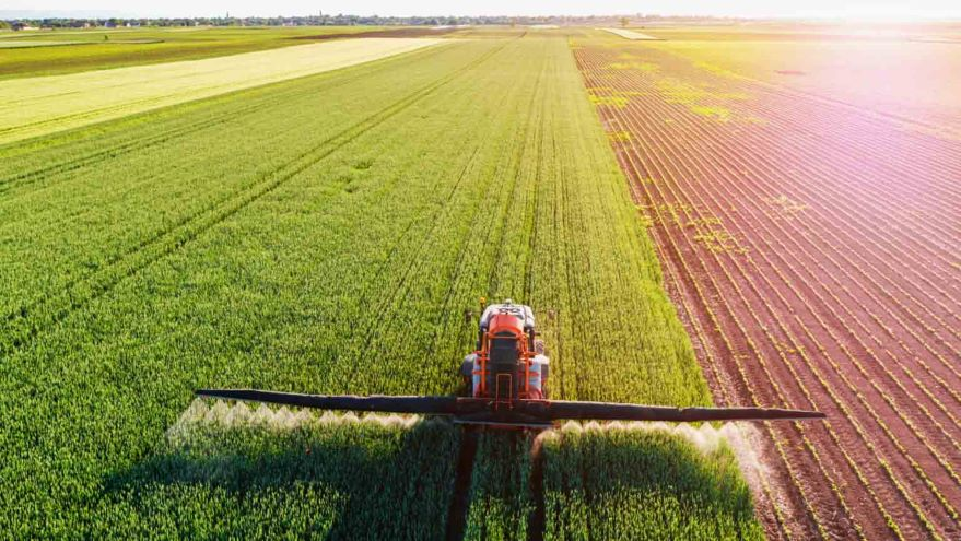 The Ecological Consequences of Agriculture