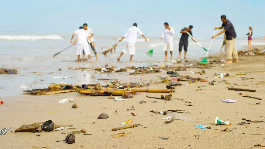 Strategies for Reversing Ecosystem Decline