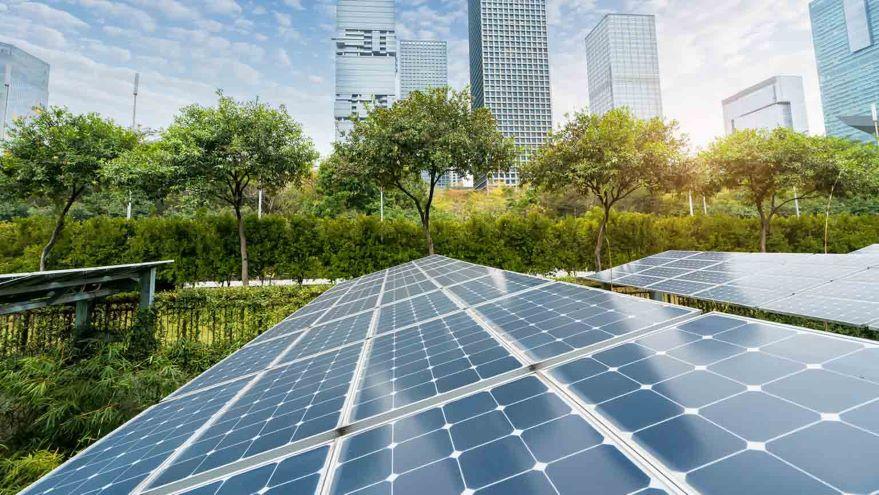 Toward Sustainable Urban Ecosystems