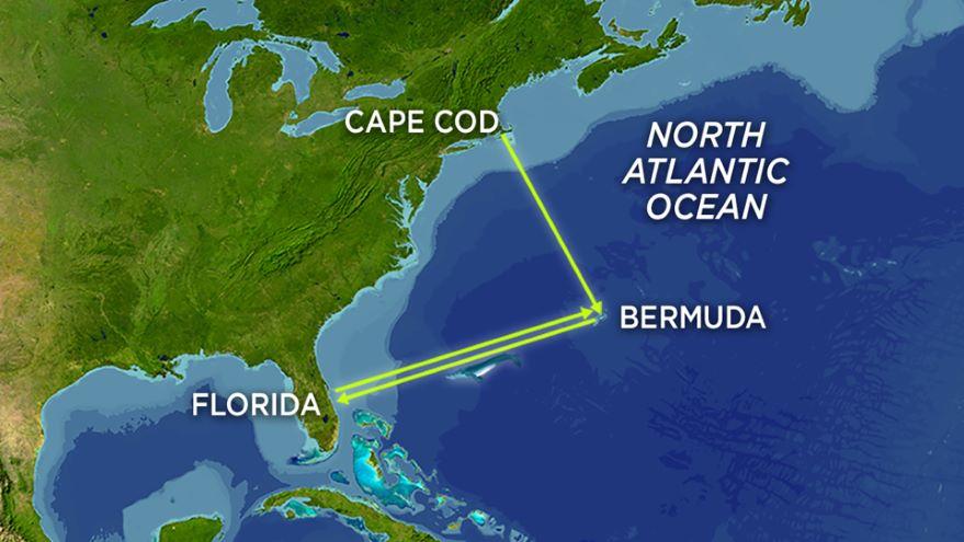 Marine Mammal Distribution around the Globe