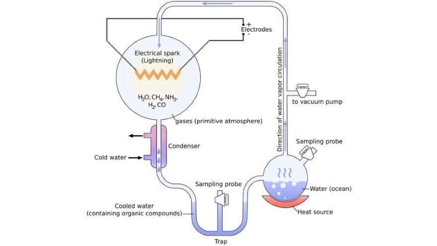 Geochemistry to Biochemistry-Raw Materials