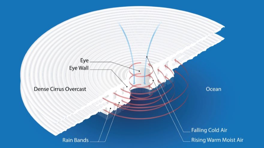 The Enormous Structure of a Hurricane