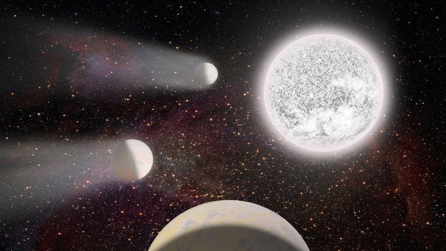 White Dwarfs and Nova Eruptions