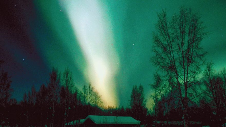 Observing Solar Activity and Earth's Auroras