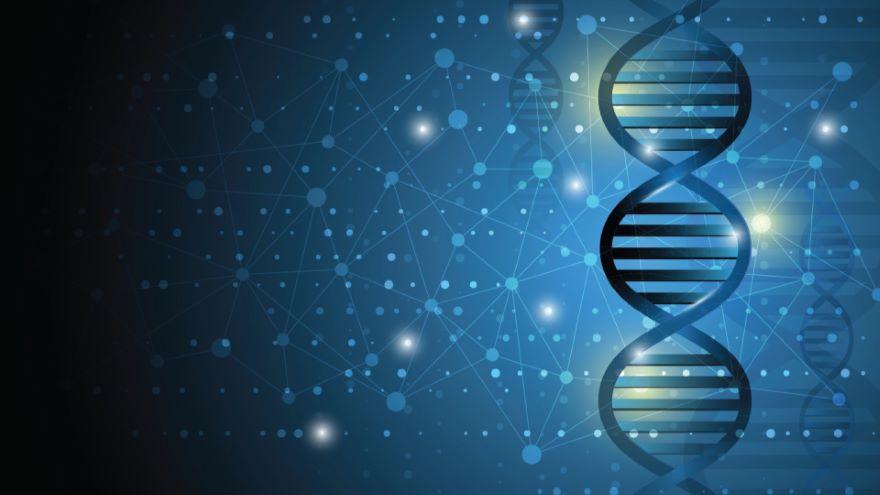 Mass-The DNA of Stars