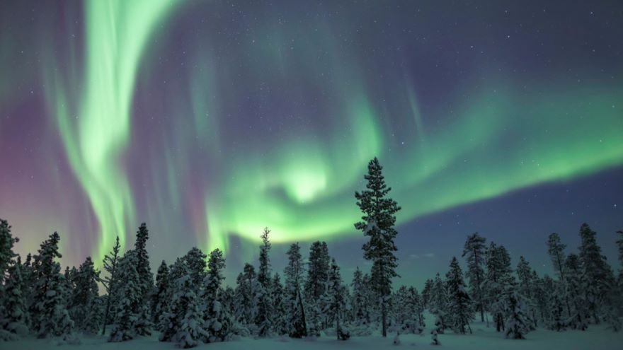 Solar Storms-The Perils of Life with a Star