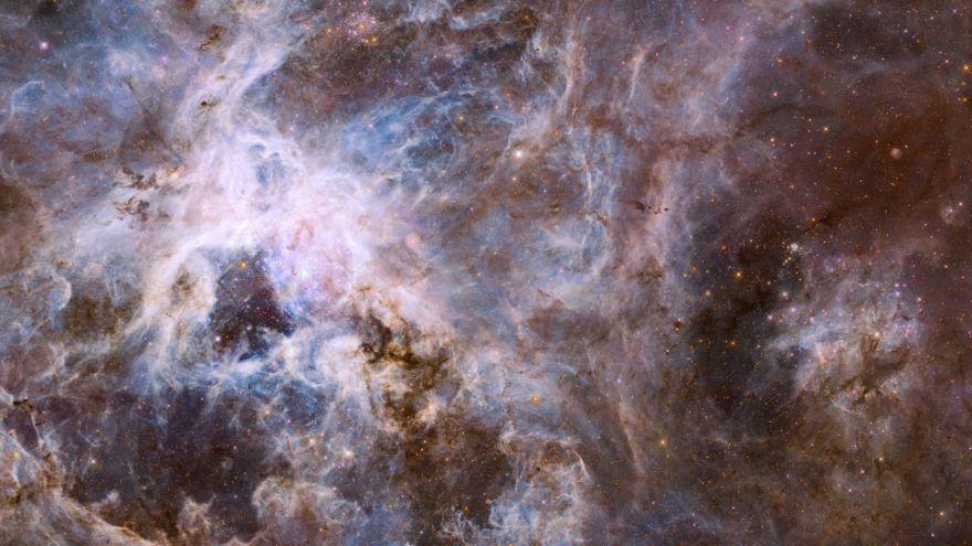 Satellite Galaxies: The Magellanic Clouds
