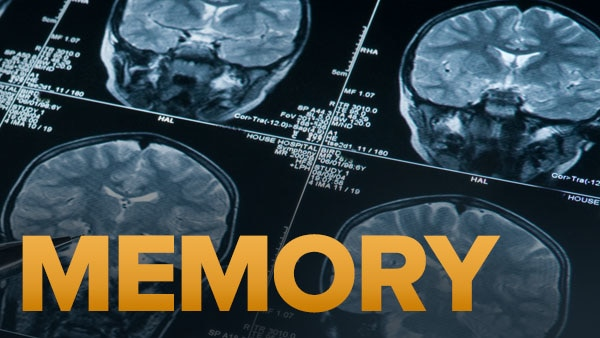 Sleep and the Consolidation of Memories