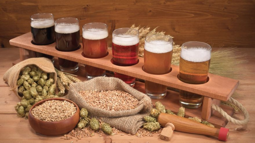 Beer, Mead, and the Fun of Fermentation