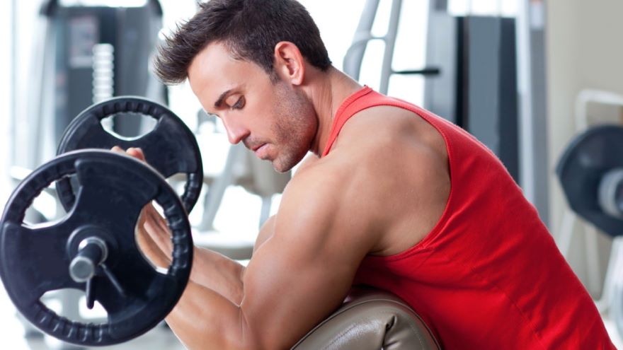 The Secret Life of Muscles