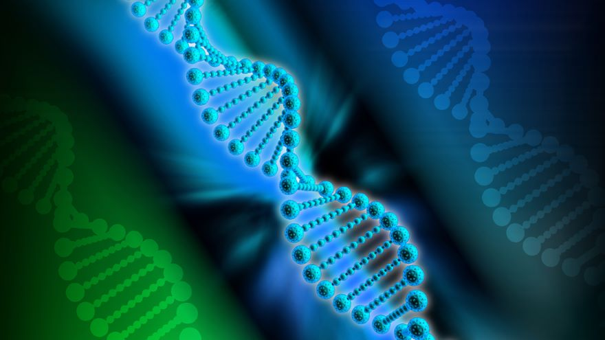 What Do Genes Say about Language Families?