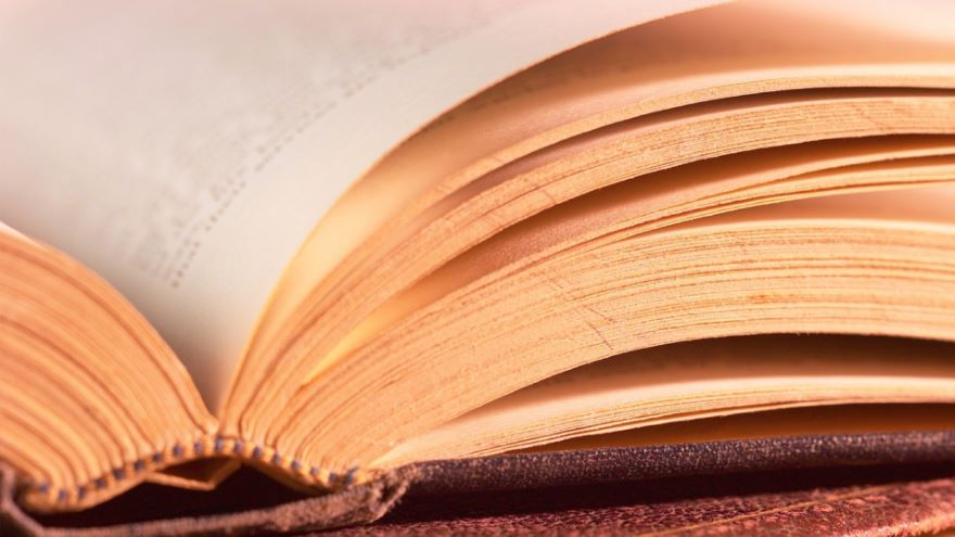 Dictionaries and Word Histories