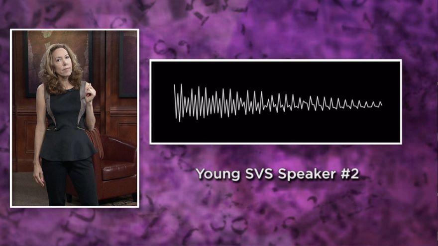 Vowel Shifts and Regional American Speech