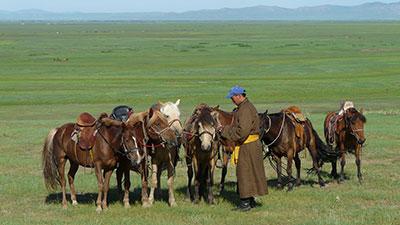 Eastern European/Central Asian Cultures