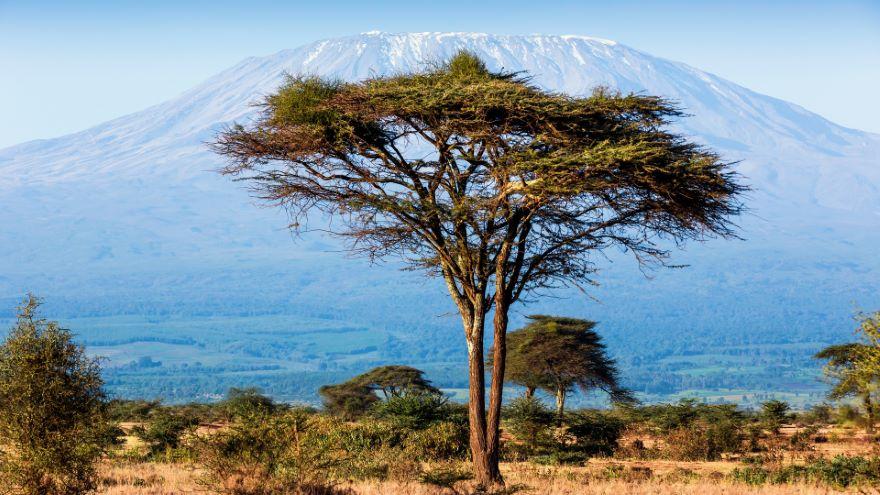 Safaris in East Africa