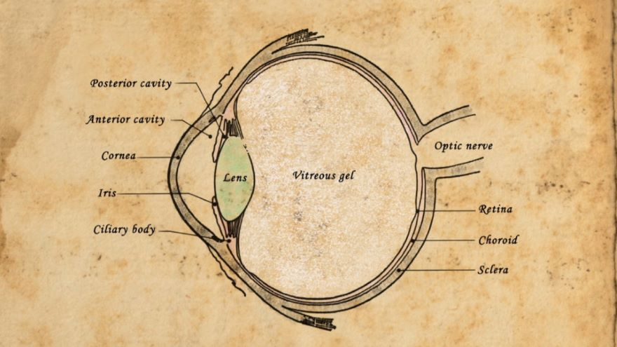 Cairo, al-Haytham, and the Book of Optics