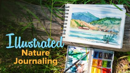 Illustrated Nature Journaling
